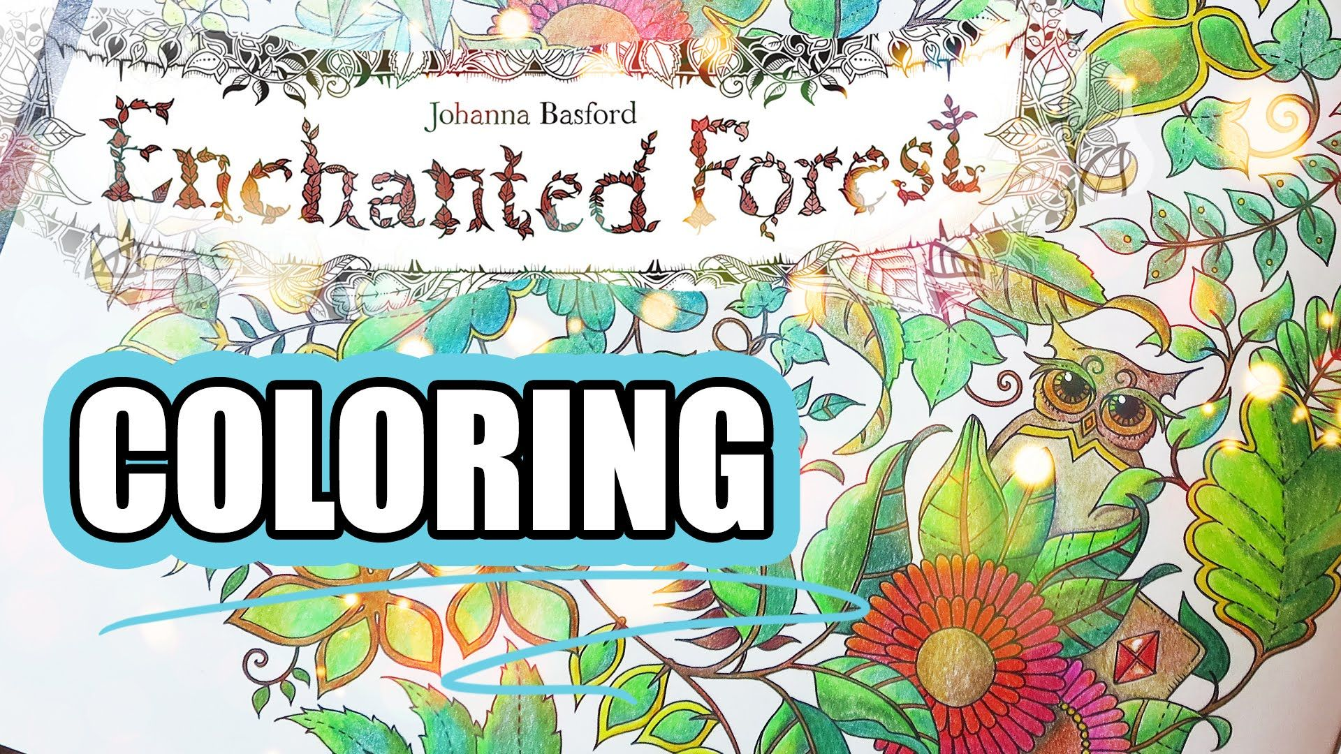 Coloring Book Journey - 001 Enchanted Forest by Johanna Basford
