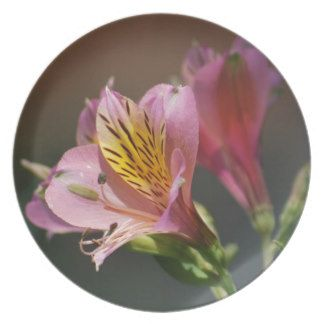 Pink Inca Lily flowers dinner party plates