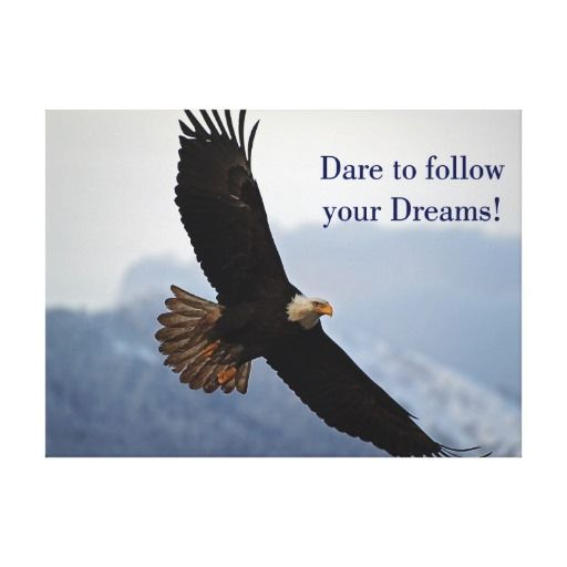 Soaring Bald Eagle Inspirational Quote Canvas Print Zazzle Com Inspirational Quotes Posters Bald Eagle Quote Posters