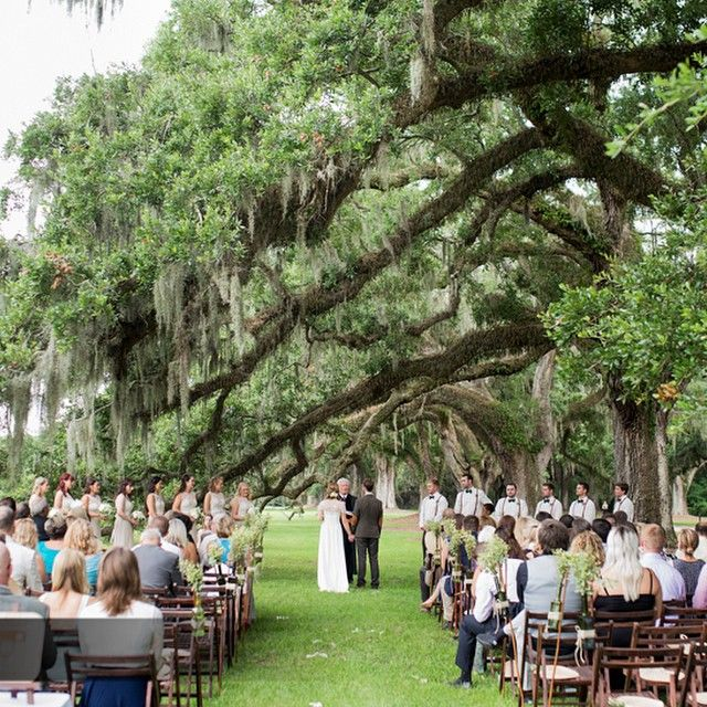 Side Lawn Ceremony Under the Avenue of Oaks! sidelawn