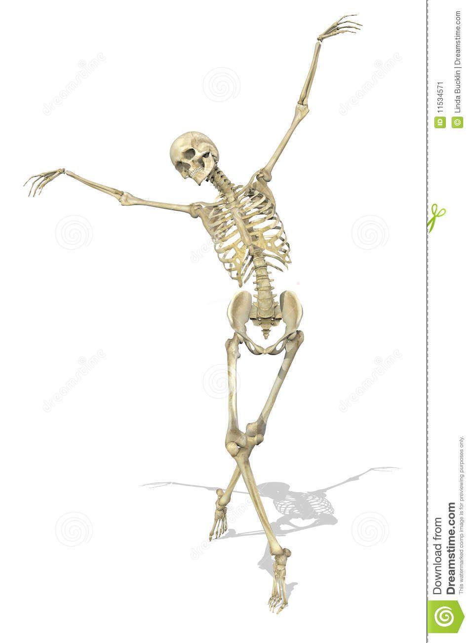Ballet Skeleton Google Search Painting Skeleton Drawings