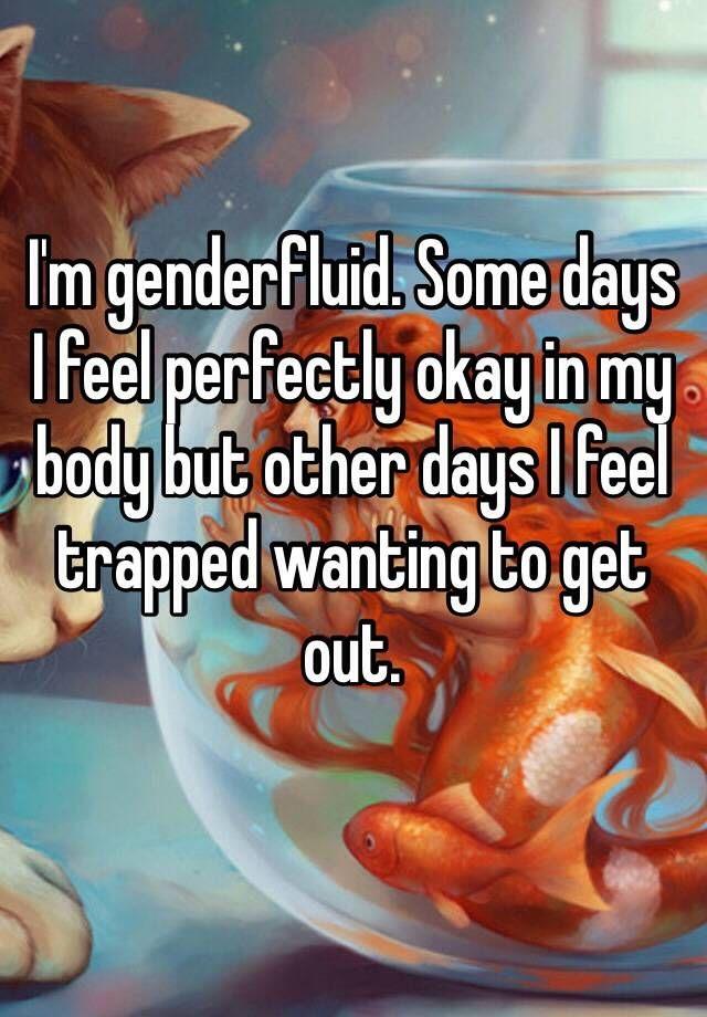 Transexual transvestite meet danbury ct