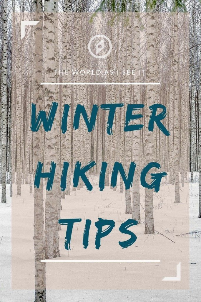 Photo of Winter Hiking Tips for Beginners * The World As I See It