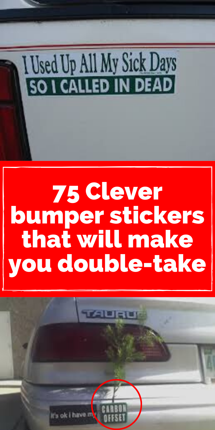 75 Clever Bumper Stickers That Will Make You Do A Double Take Clever Bumper Stickers Bumper Stickers Stick Figure Family [ 1472 x 736 Pixel ]