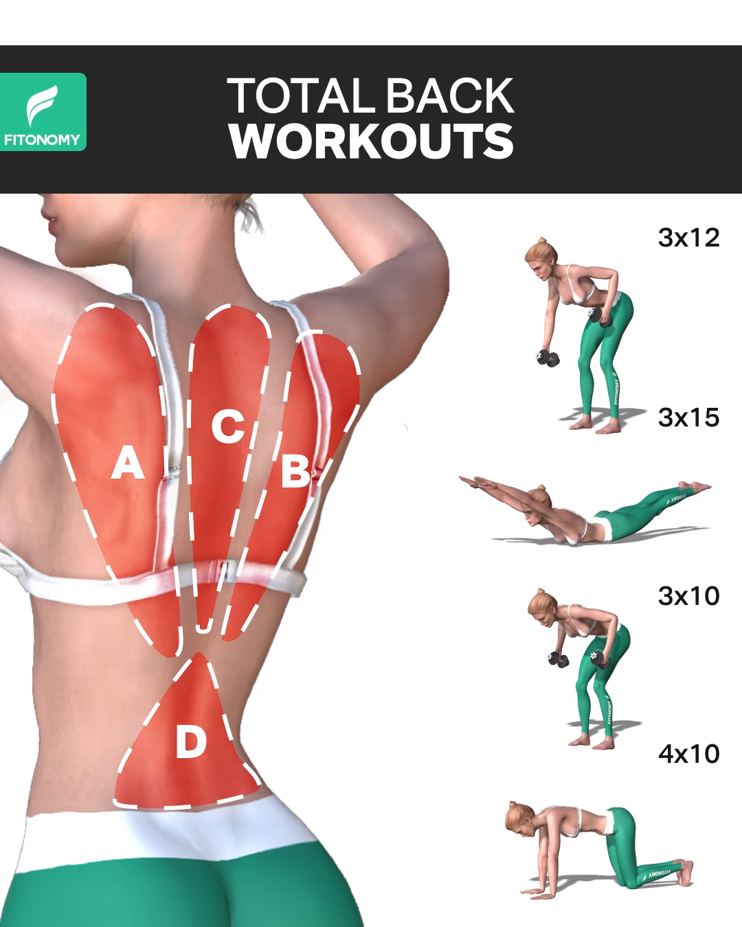TOTAL BACK WORKOUTS  #fitnessexercises