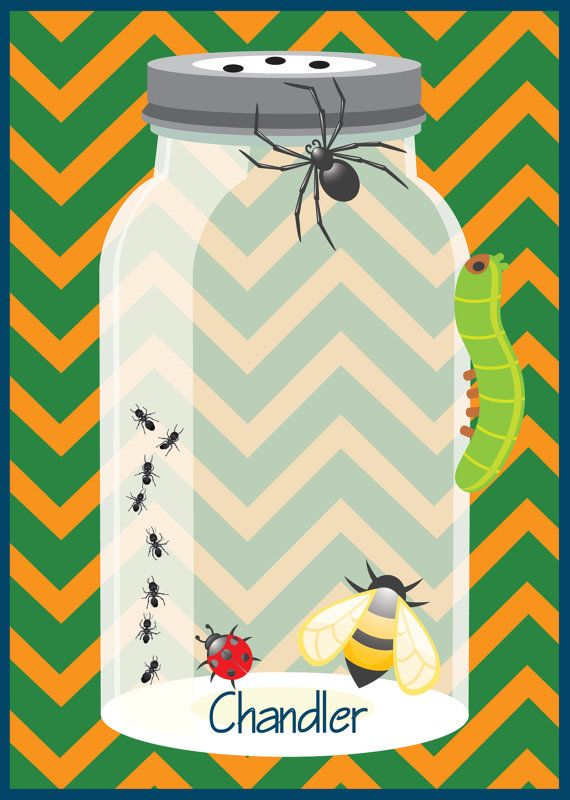 printable or emailable bugs insect birthday party by