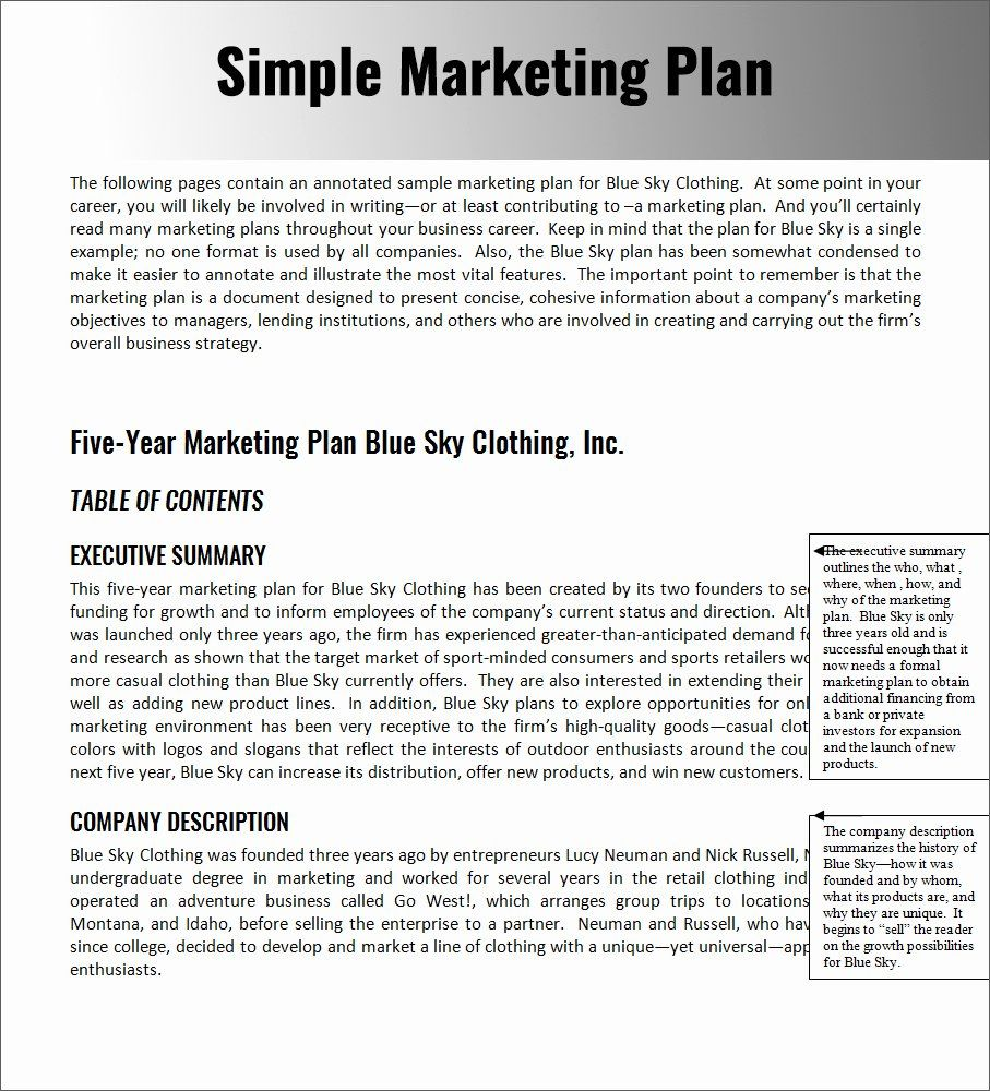 40 Simple Strategic Plan Template in 2020 Business plan