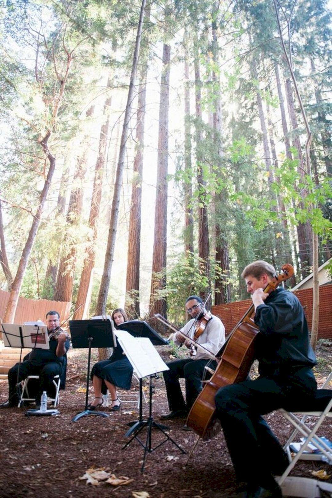 Redwood Forest Wedding Venues 3 | Redwood wedding, Redwood ...