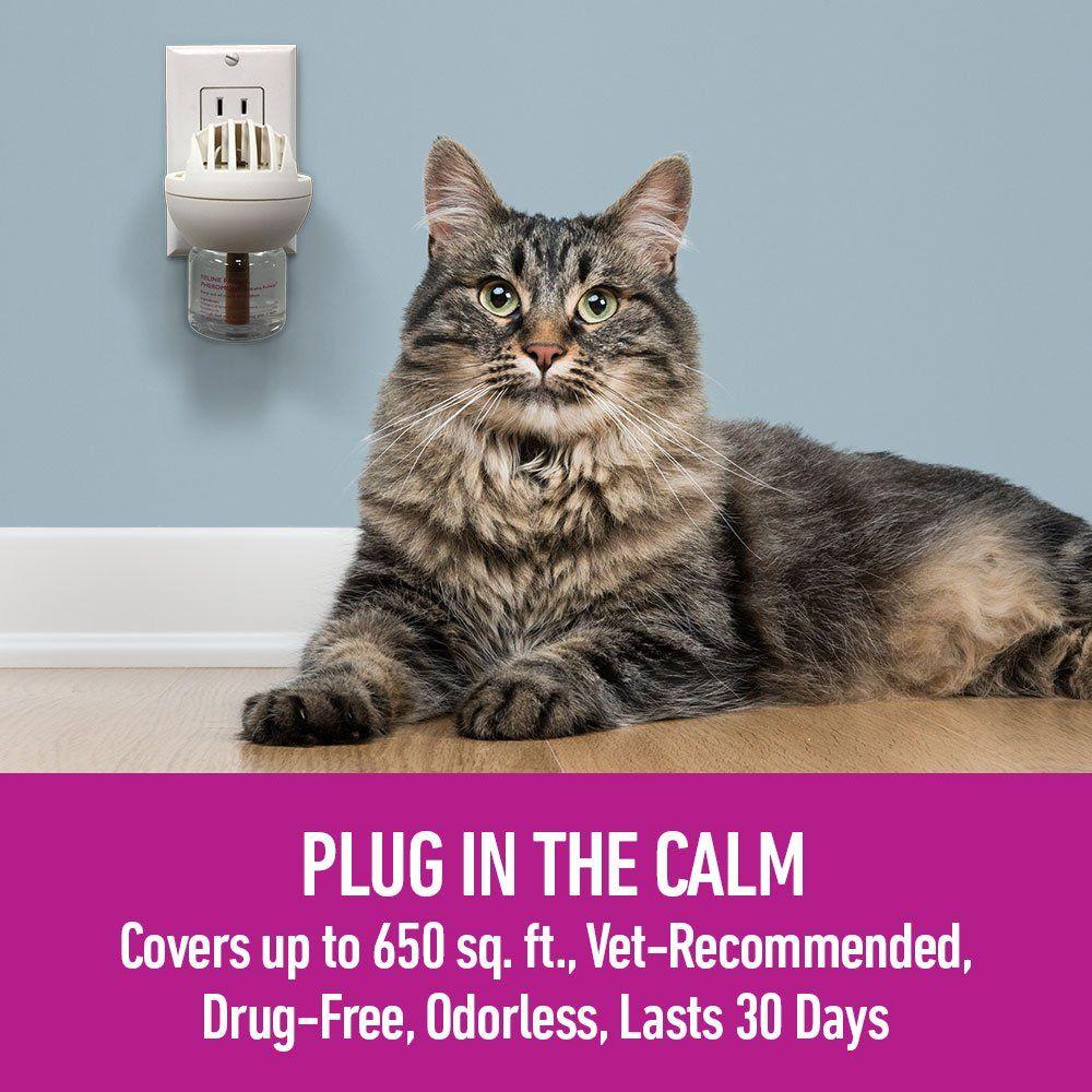 Comfort Zone Feliway Diffuser Kit for Cat Calming * Click