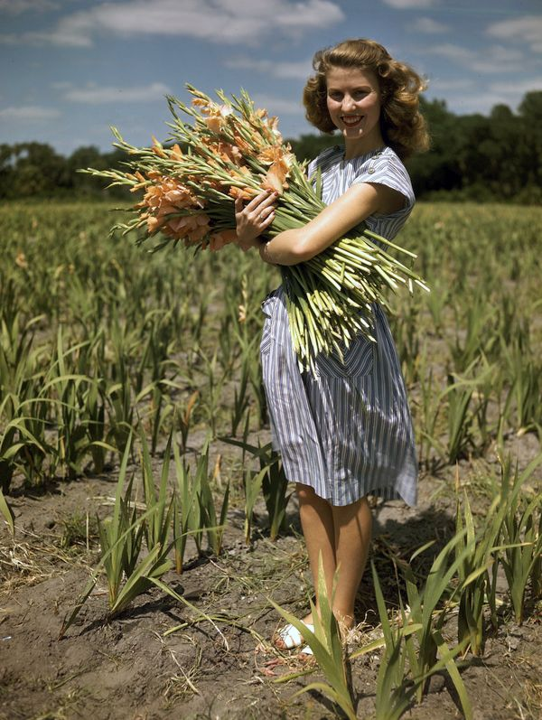Image result for woman carrying flowers Women, Gladiolus