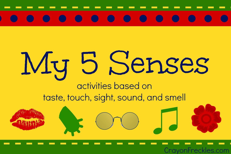 Activities Centered Around The 5 Senses Taste Smell