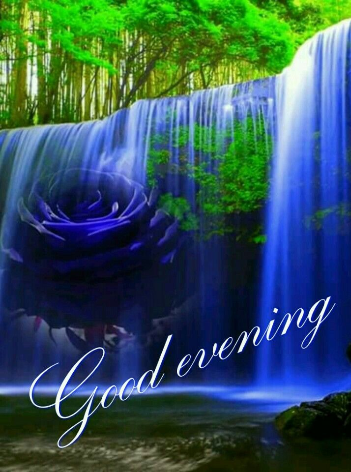 Pin By Rupali Saha On Good Morning Good Morning Picture Good Evening Greetings Good Night Miss You