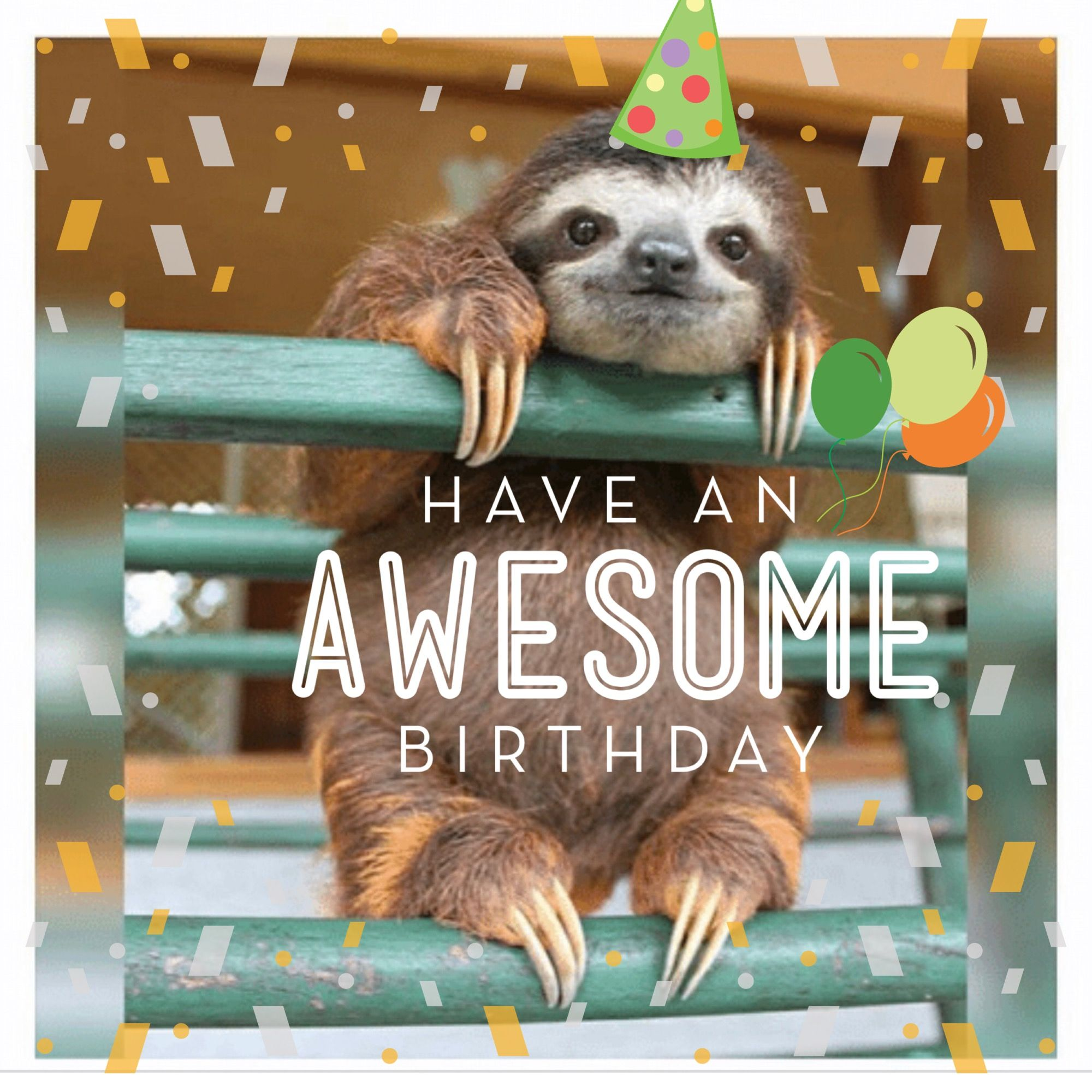 Pin by Michelle Cross on Celebration Messages Sloth