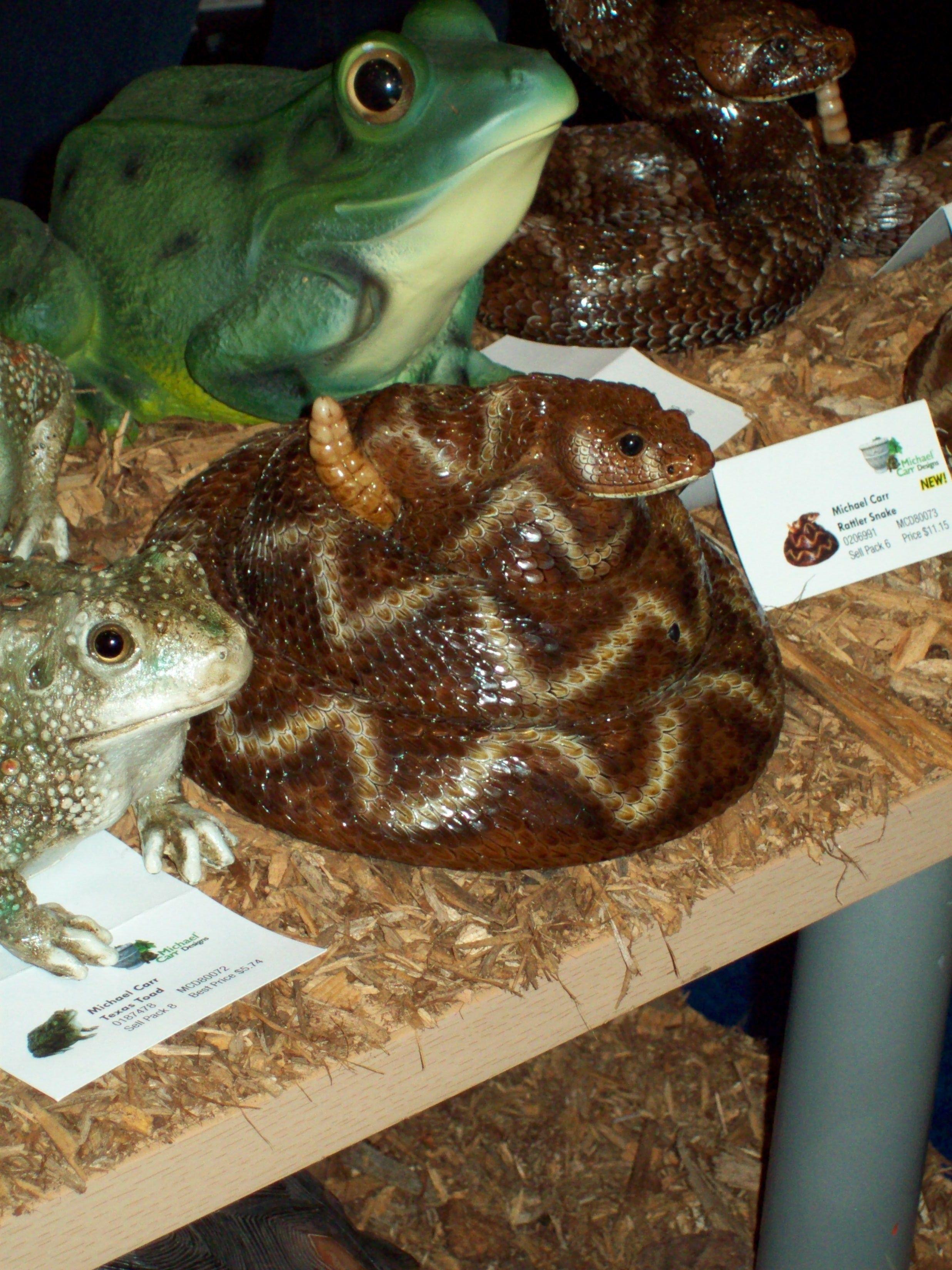 A rattlesnake that really rattles  (motion sensor) Coming spring