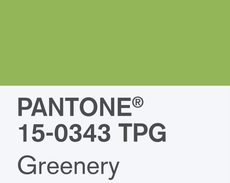 farbe des jahres 2017 pantone greenery als wandfarbe lack online bestellbar auf. Black Bedroom Furniture Sets. Home Design Ideas