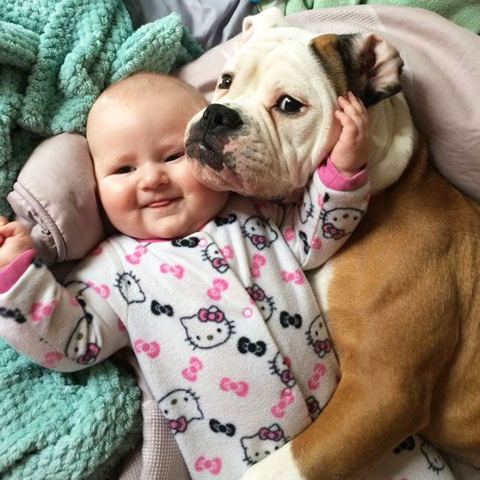 Adorable Photos Proving That Your Kids Need A Dog Dog - 30 adorable pictures babies puppies will melt heart