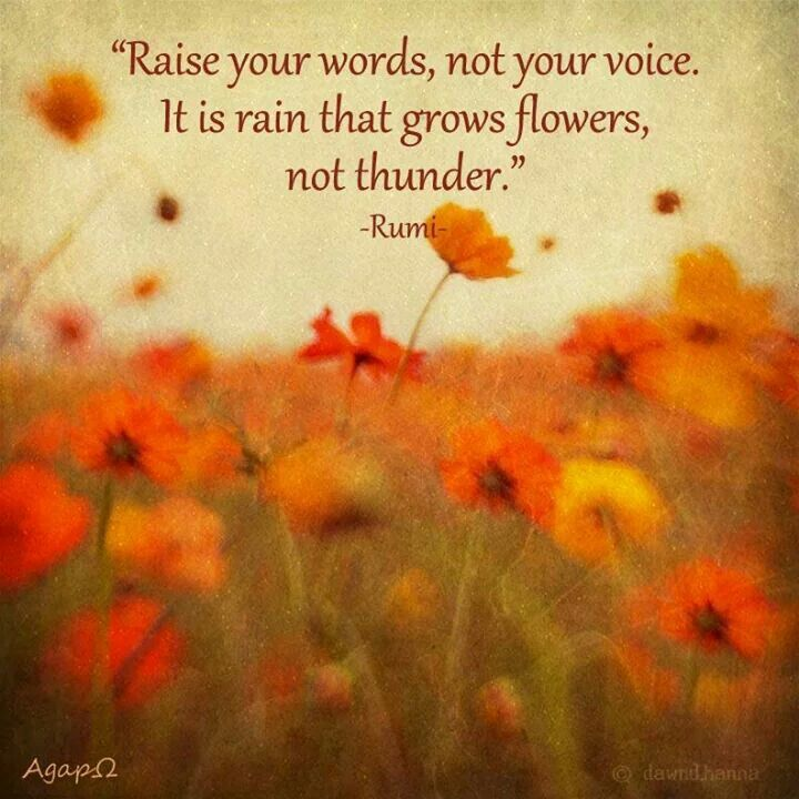 Raise Your Words Not Your Voice Its Rain That Grows Flowers Not