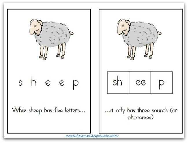Playing With Sounds In Words Part 3 Phoneme Segmentation