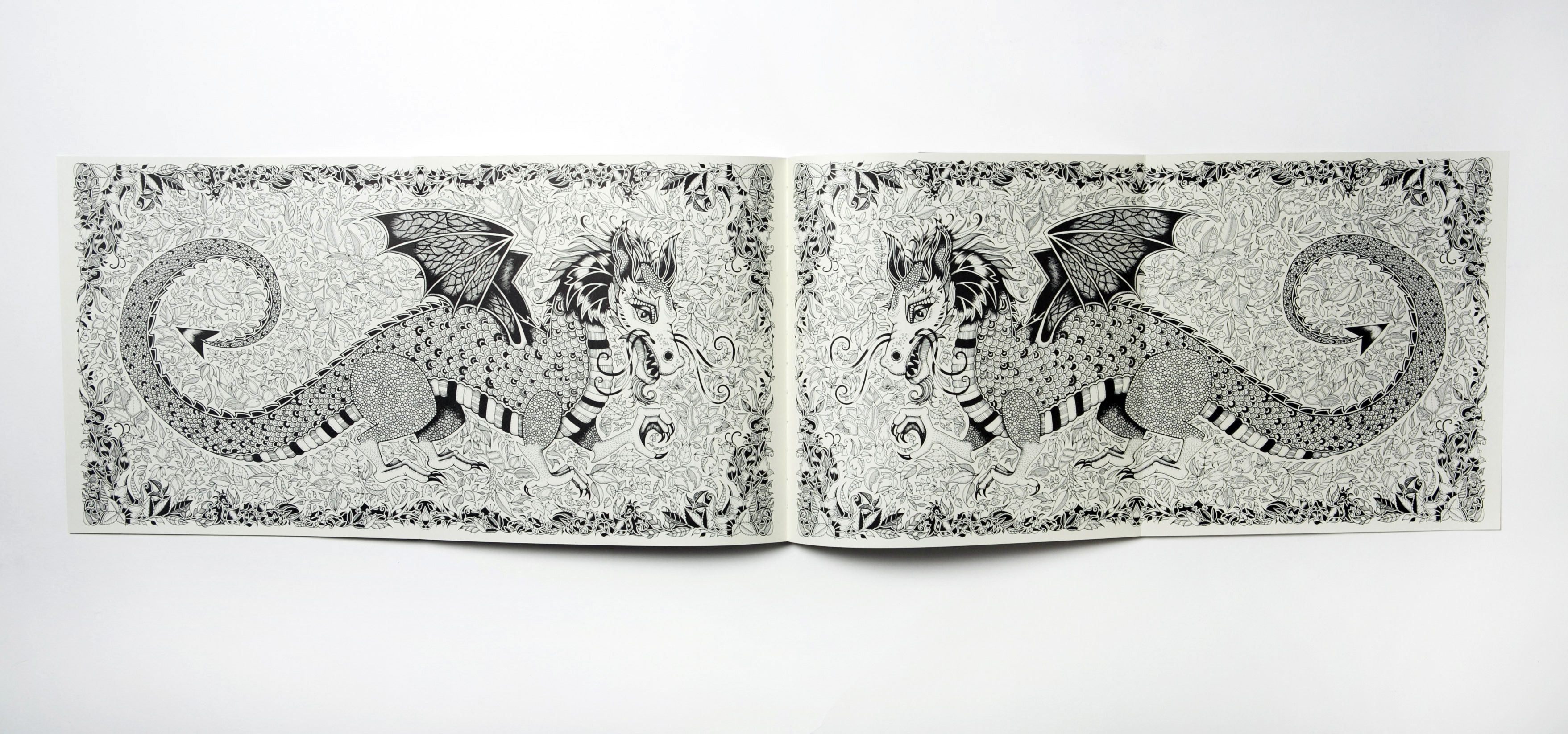 Artist Goes Outside The Lines With Coloring Books For Grown Ups