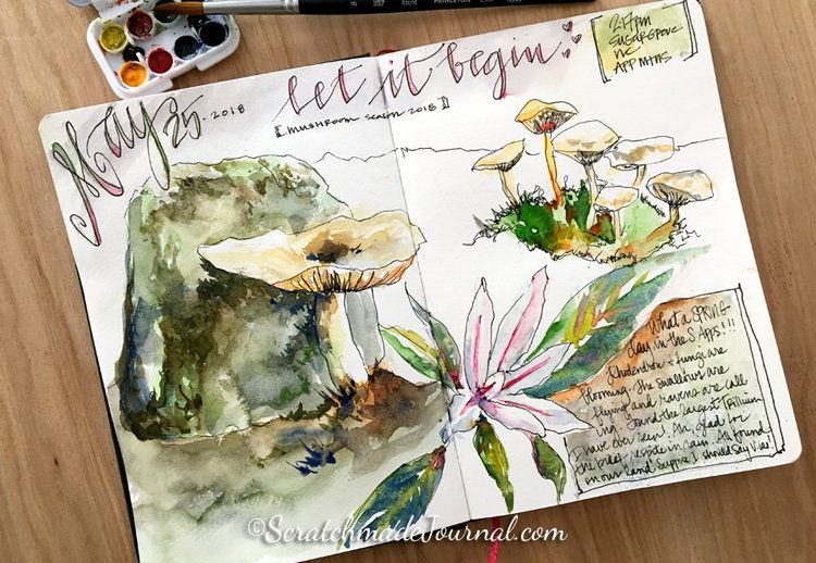 Review Of Hahnemuhle Watercolor Papers Nature Collage
