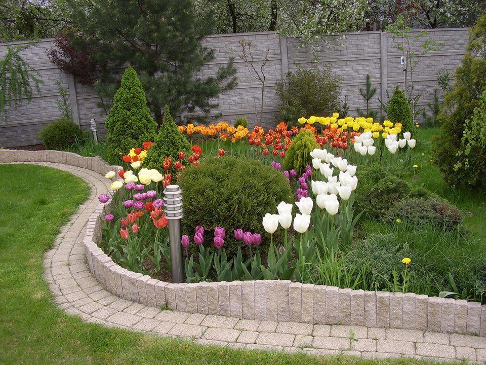 Wiosna W Ogrodzie Ogrody Kielce Greenpoint Ogrody Kielce Ogrody Przydomowe Projektowanie I Zakladanie Plants Sidewalk