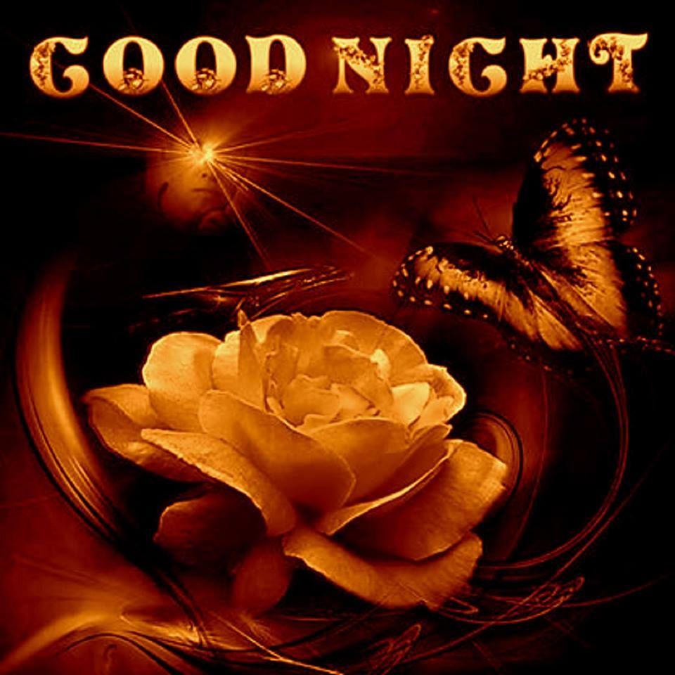 bonne nuit   Bonne nuit, Nuit, Photos