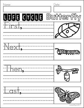 April Writing Journal Prompts   bugs, insects, spiders, bees