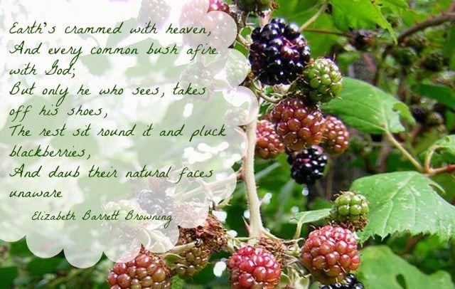 God's glory is all around us -- Elizabeth Barrett Browning poem