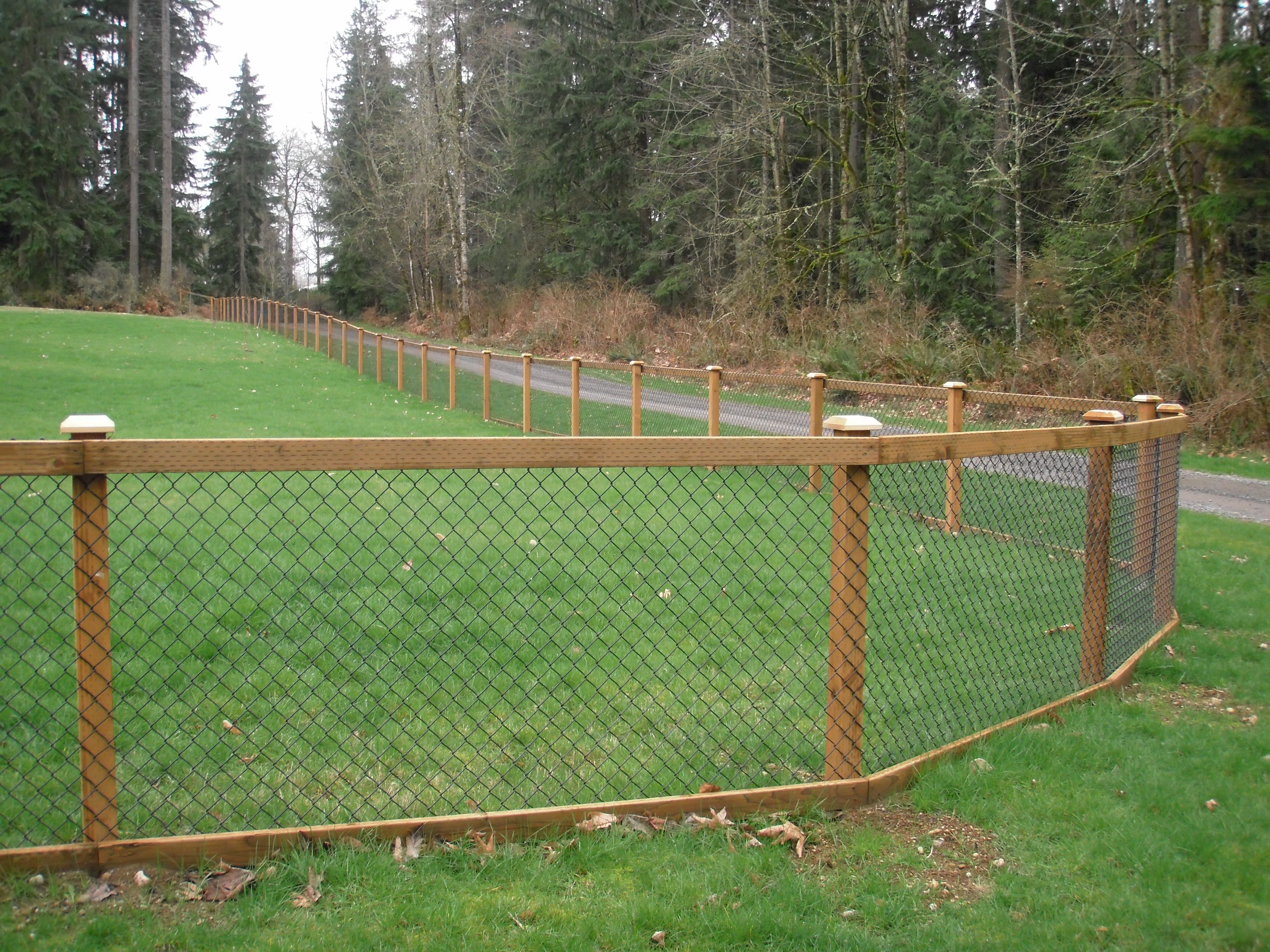 Chain Link Fence With Cedar Wood Trim Fence Ideas In