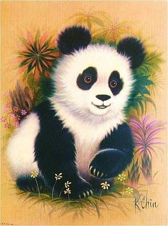 Soloillustratori: k. chin pulcini in 2019 animali