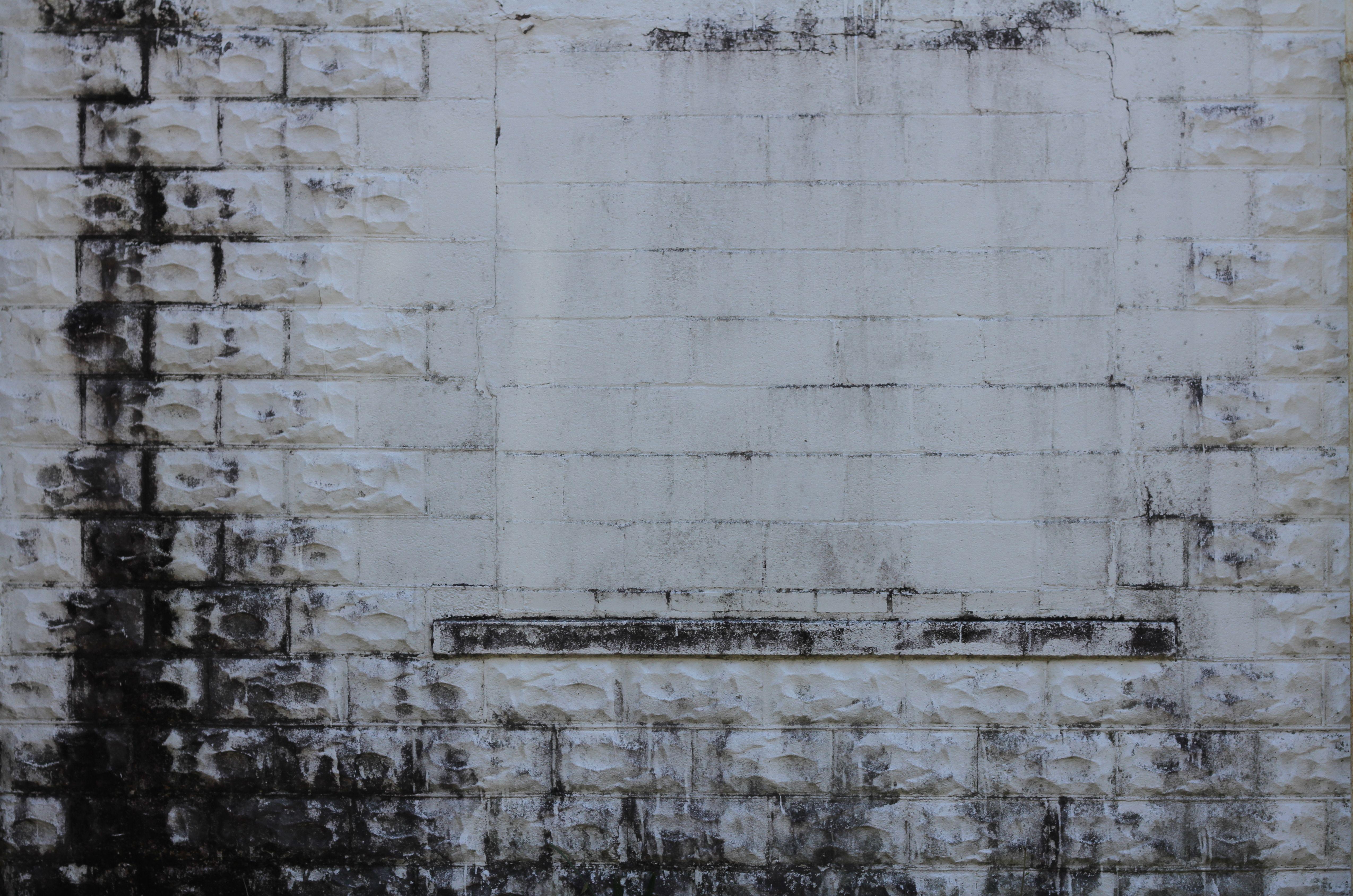 dirty tiled wall - Google Search | Studio | Pinterest