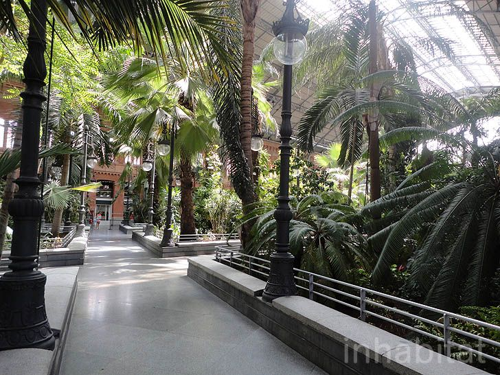 Madridu0027s Atocha Station Doubles As An Indoor Botanical Garden And Turtle  Sanctuary