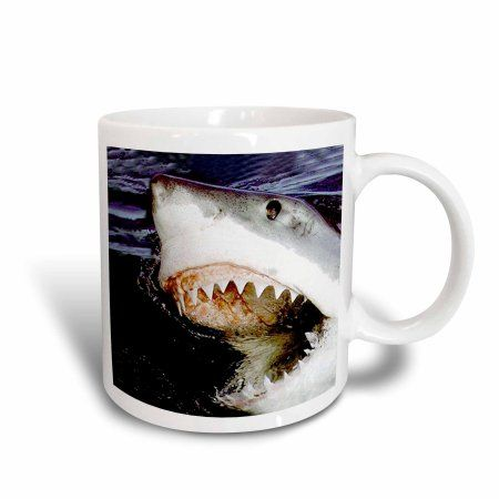3dRose Great White, Ceramic Mug, 15-ounce