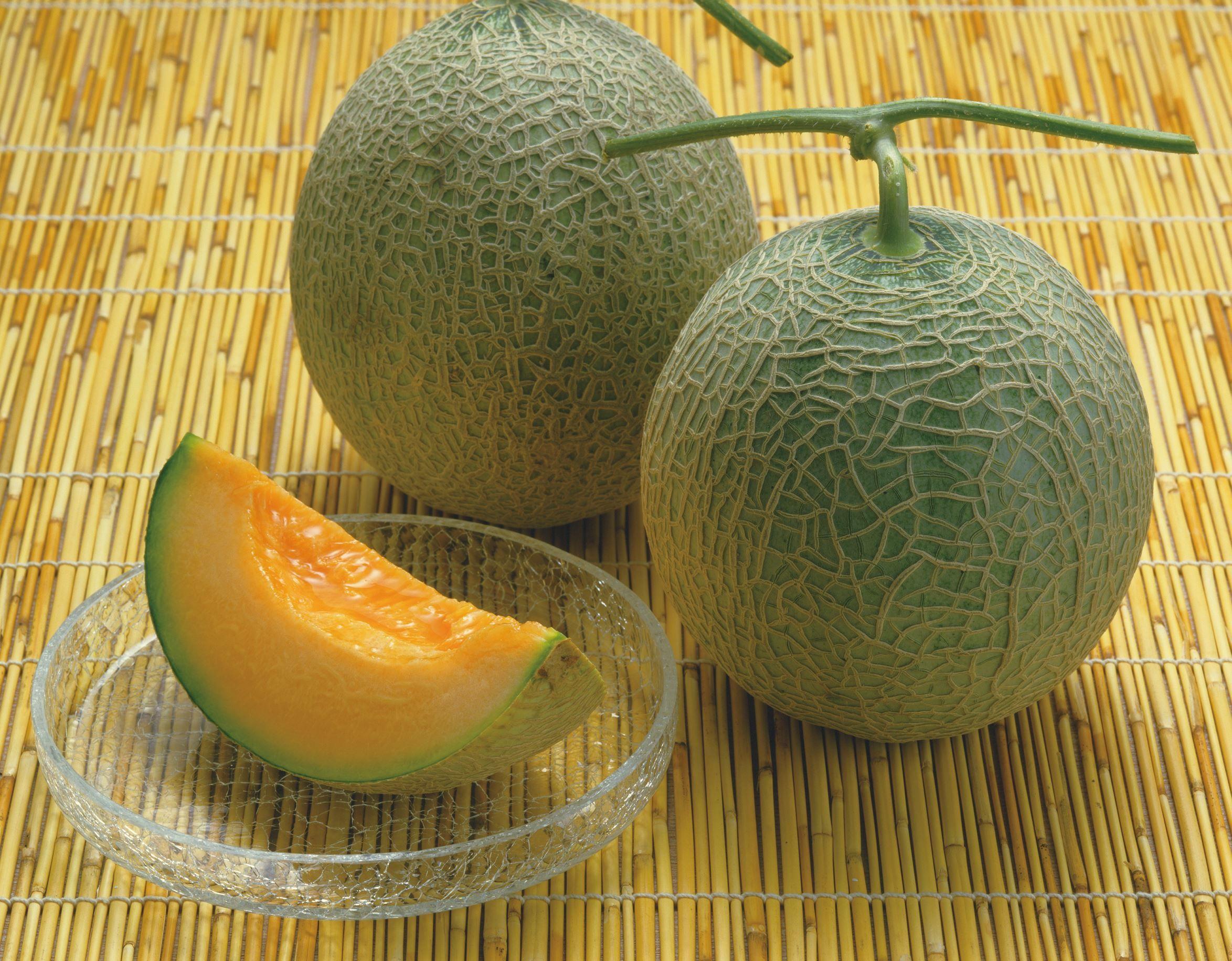 Image result for yubari melon