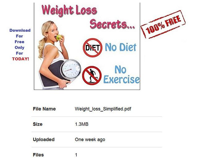 Low Carb Diet No Fat Loss