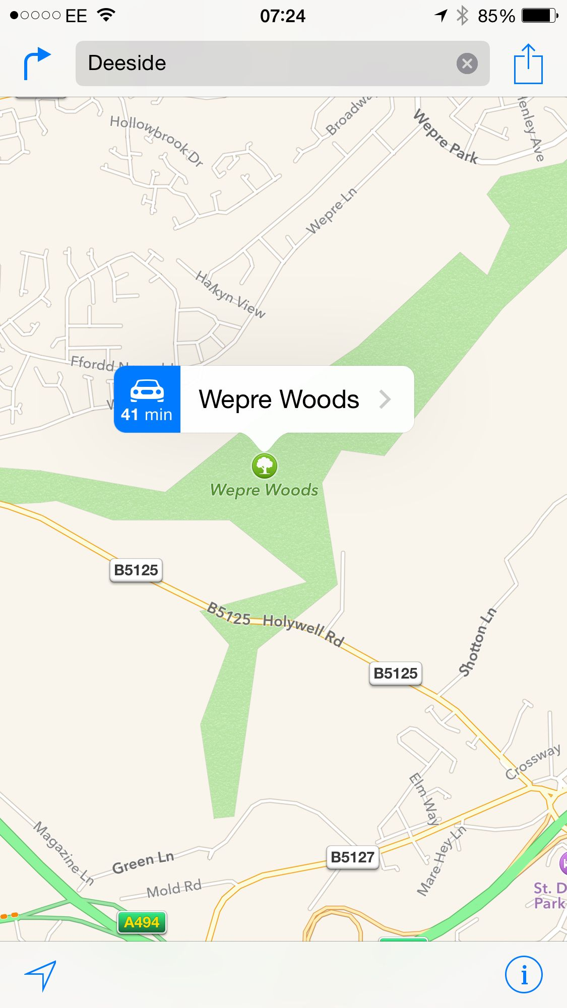 Wepre woods in deeside