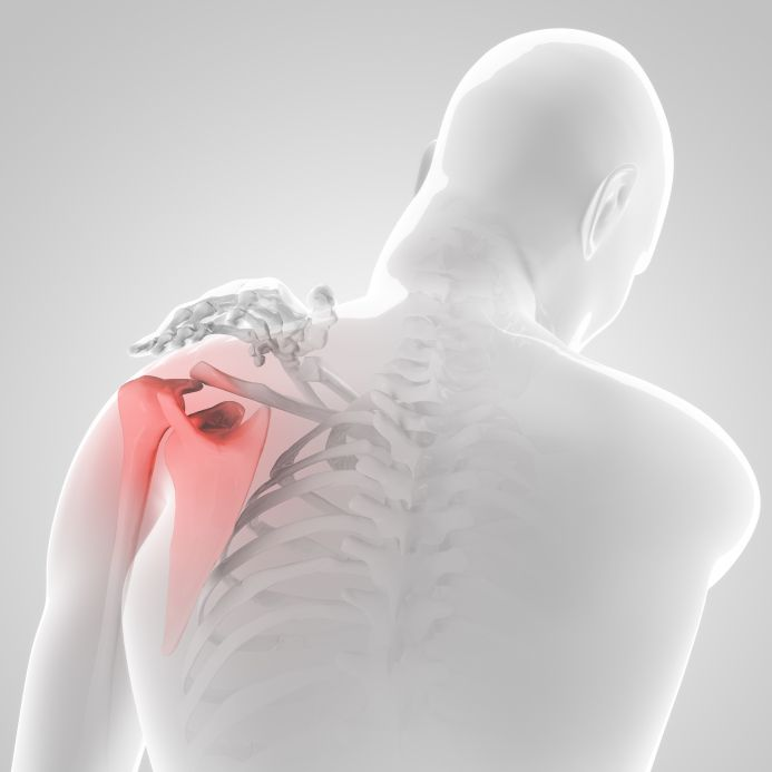 isometric exercises for shoulder replacement