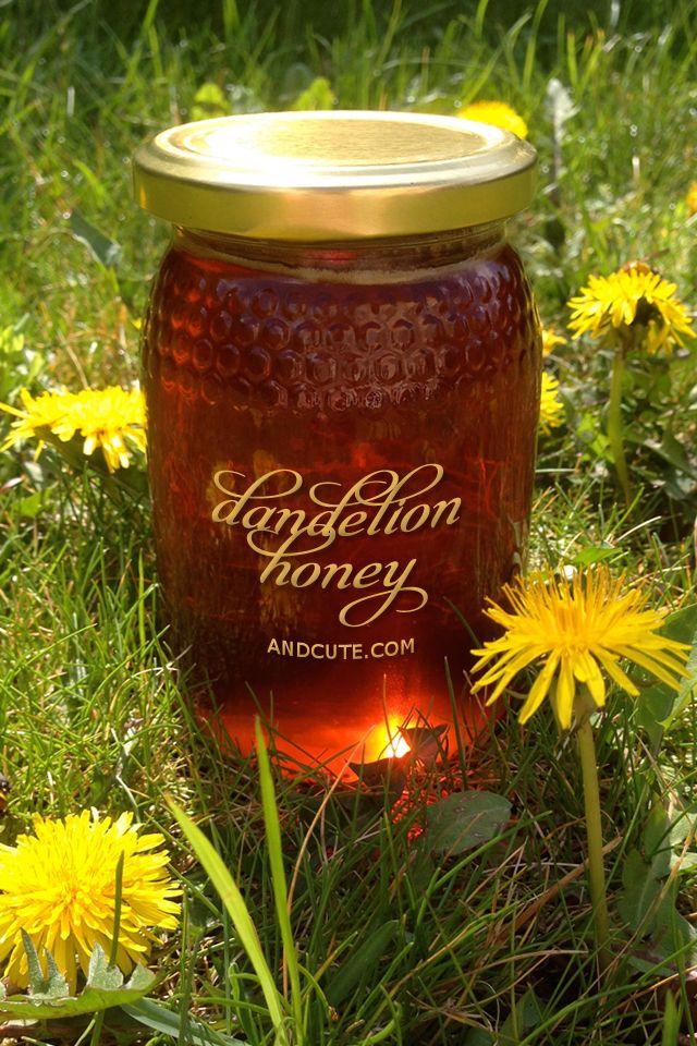 Bee Free Dandeloin Honey Recipe Honey Recipes Dandelion Bee Free