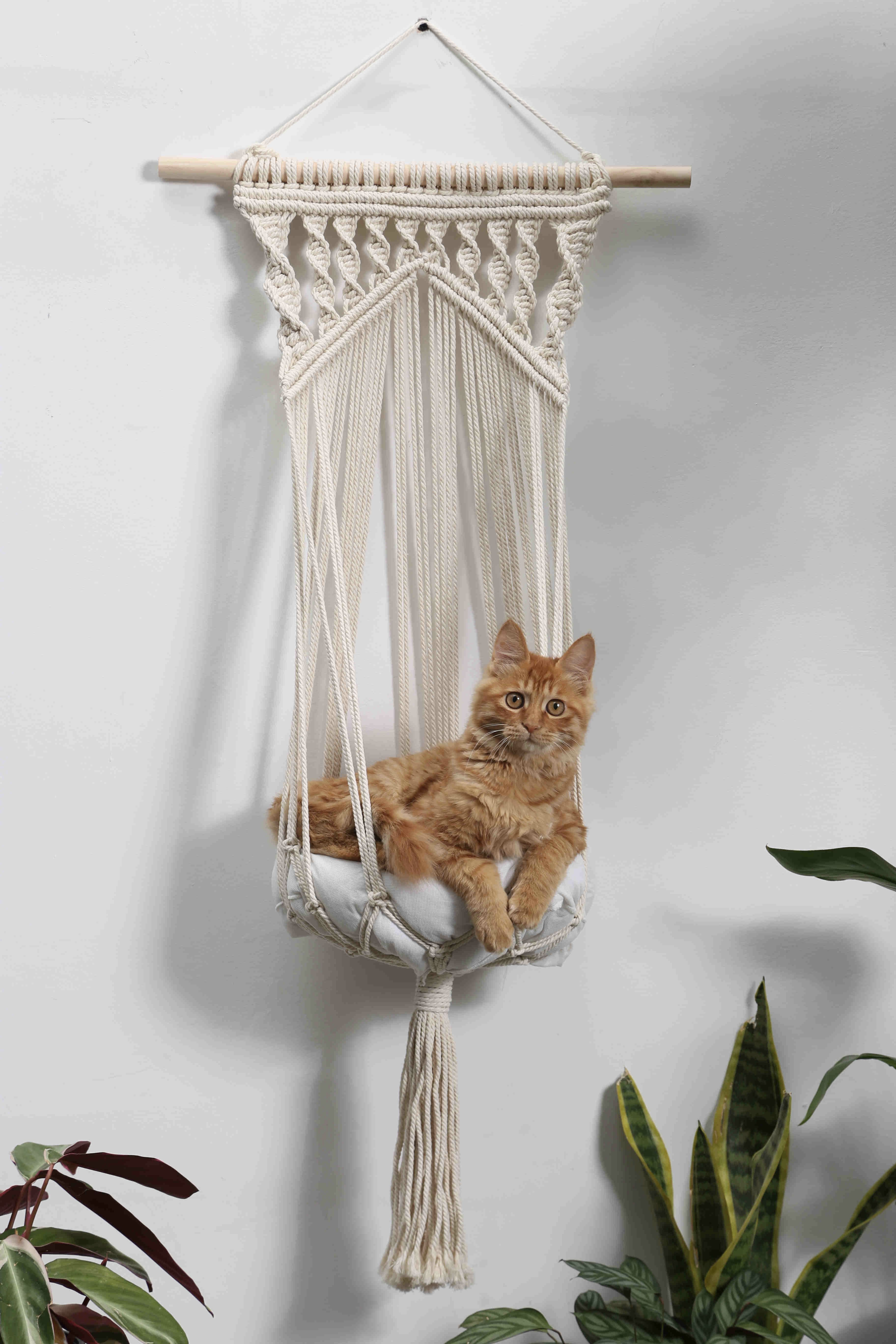 Macrame Cat Hammock Woven Hanging Cat Bed M … in 2020