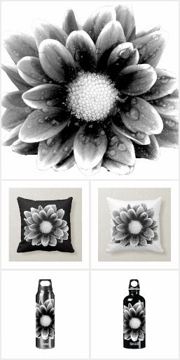 Don't lose your color! Even you feel getting pale, remember, there is a colorful world out there! #zazzle #flower #floral #photography #photo #blackandwhite #nature #artprint #gift #giftideas #design #home #homedecor #decoration #wallart #pillow #curtain #poster #doormat #bathmat #pouf #clock #bedroom #bathroom #livingroom #blanket #duvet
