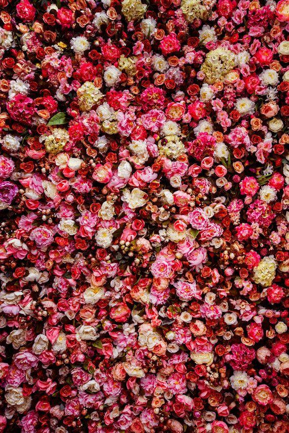 rose wall Backdrop flower, romantic scene, wedding