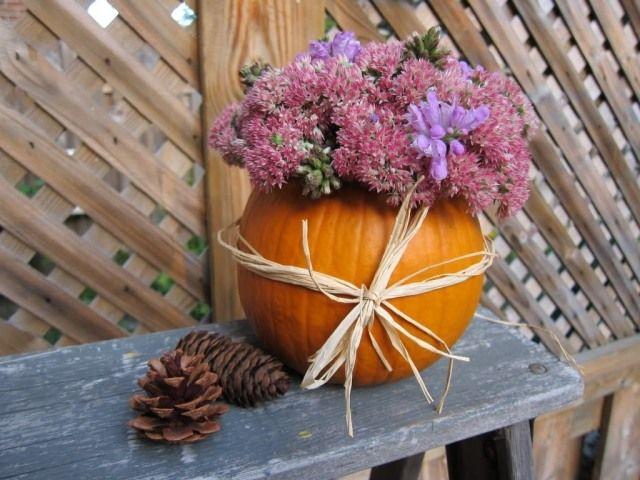 herbstdeko für den garten-blumenvase aus kürbis-zapfen | kürbisse, Garten und erstellen