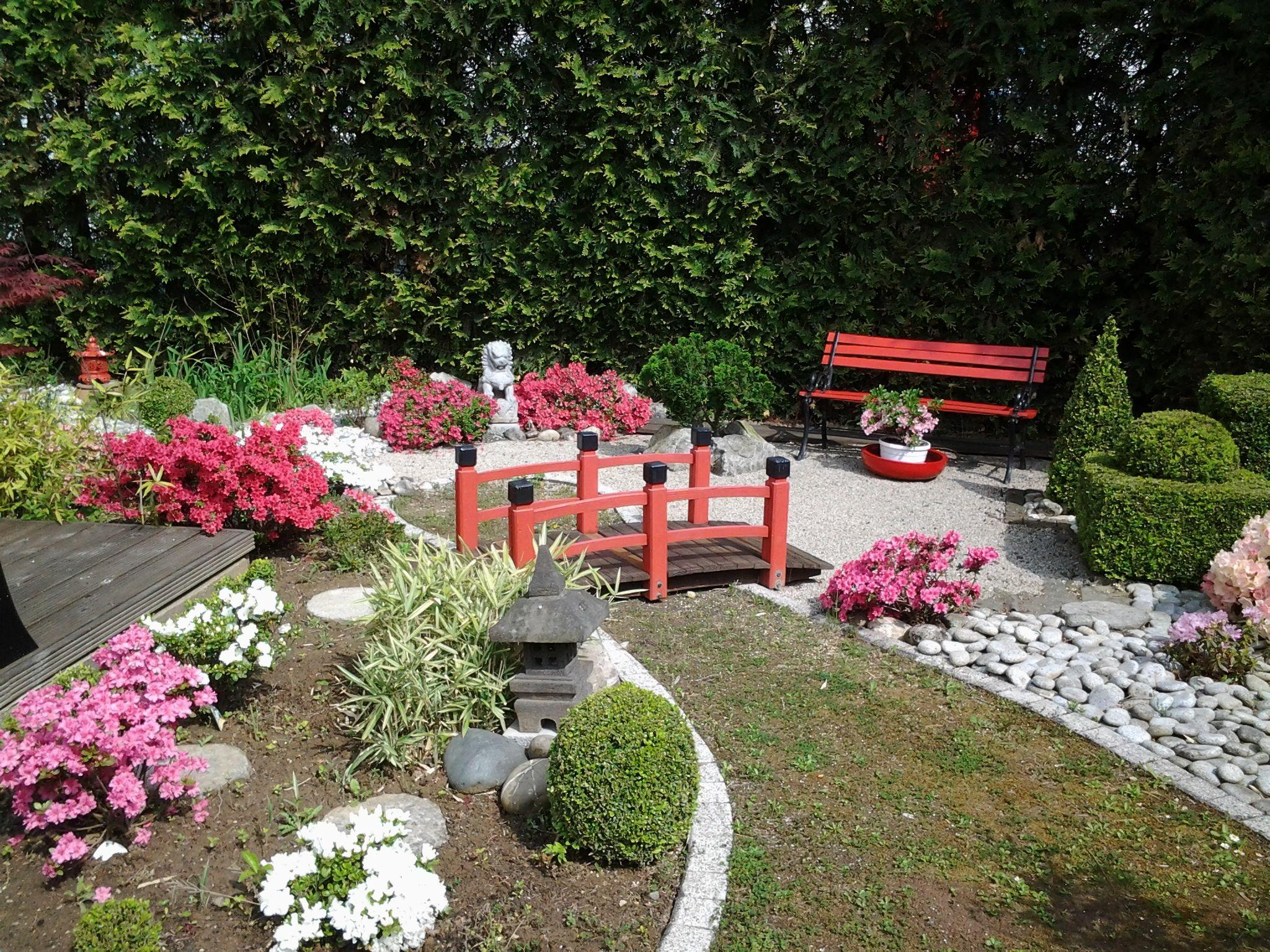 Mein kleiner Japangarten   Japanischer garten, Garten ...
