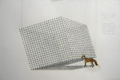 Claire Morgan - Works on paper 2007