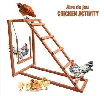 Le perchoir : l'accessoire indispensable pour vos poules
