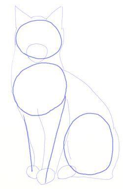 Wie Man Realistische Katzen Zeichnet Schritt 3 In 2020 Katze