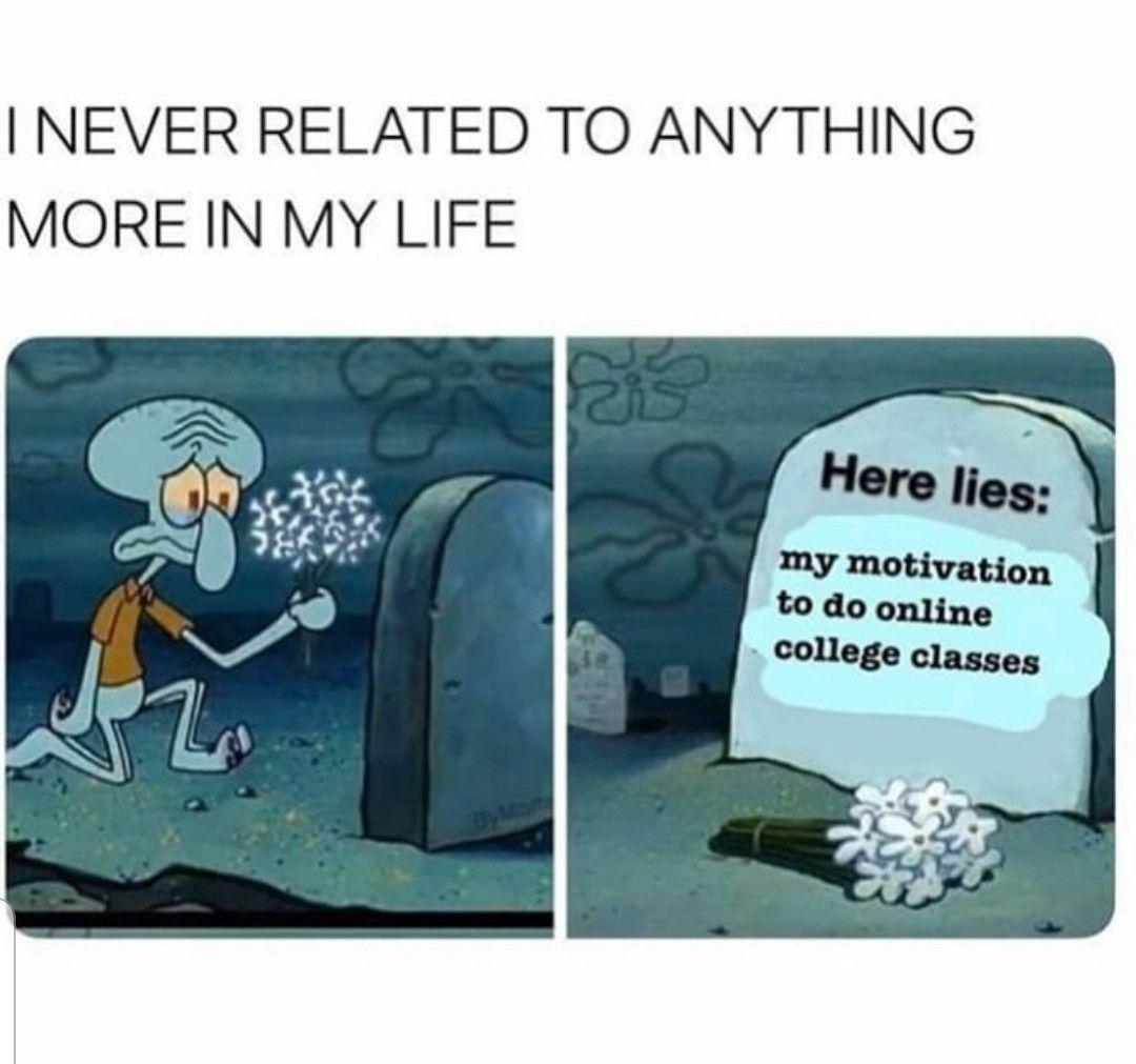 Online Classes College Memes Class Memes Stupid Memes