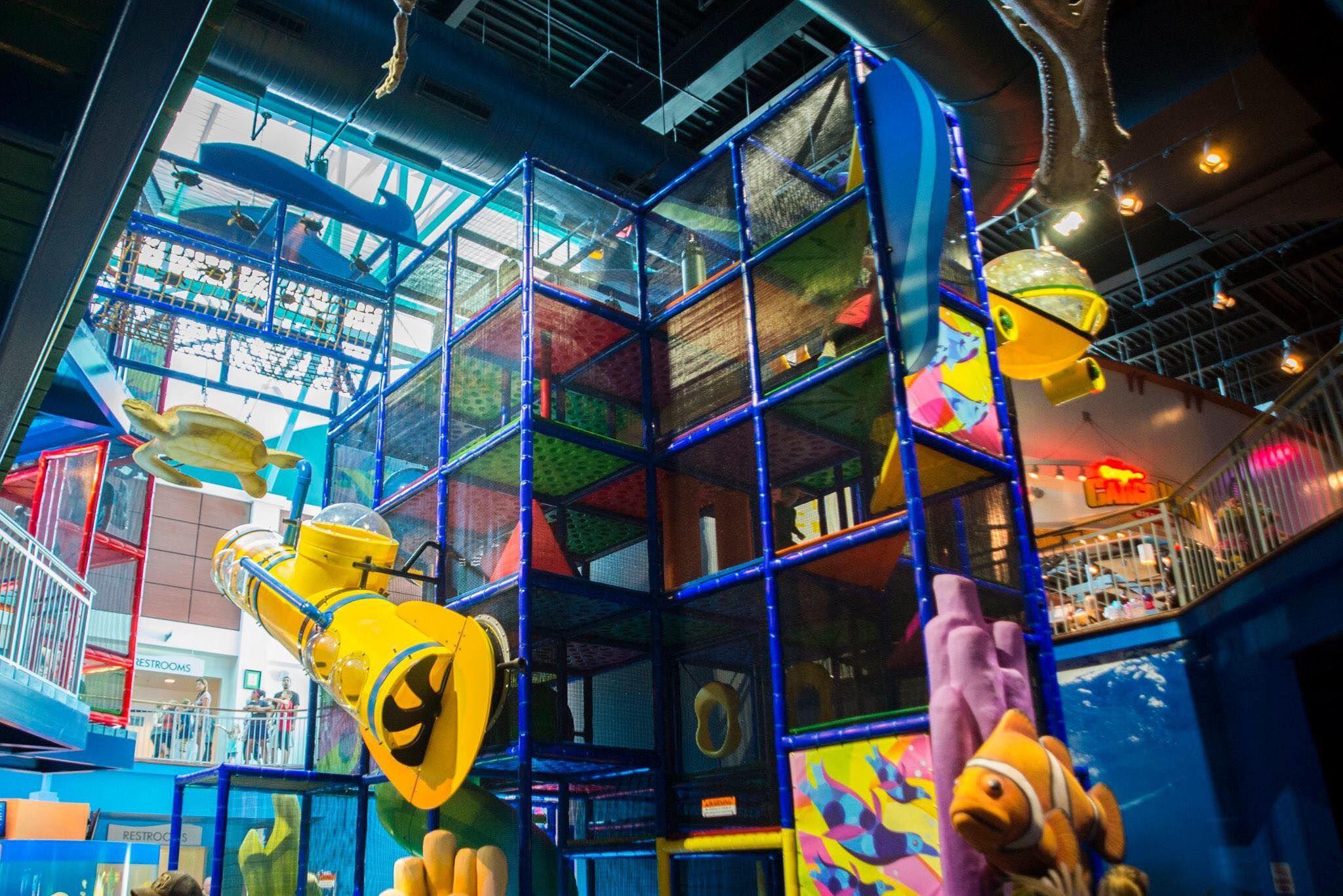 NOW OPEN! Ripley's Aquarium in Gatlinburg just opened an ...