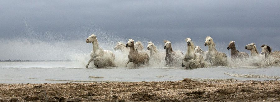 """500px / Photo """"Beat you there!"""" by Lillian King"""