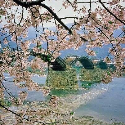 Kintai bridge  Yamagucchi   Japan